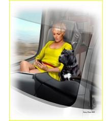 Truckers series. Joni (Lookout) Johnson & her dog Maxx-24045