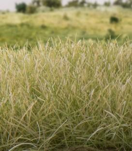4 mm Static Grass Light Green - Verde Claro - FS619 Woodland Scenics.