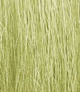 Field Grass Light Green FG173 Woodland Scenics.