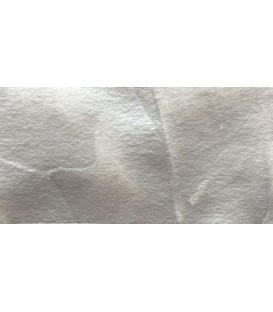 50) Acrilico Vallejo Studio 200 ml. 939 Silver