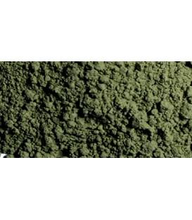 73.111 Tierra Verde Vallejo Pigments (30 ml.)