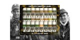 Set Vallejo Panzer Aces (17 ml.) Nº 7 Camuflaje