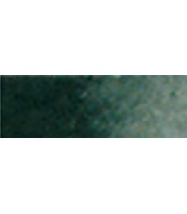 40) 701 Negre ivori aquarel.la tub Van Gogh.