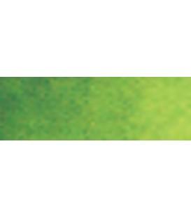 29) 623 Verd bufeta aquarel.la pastilla Van Gogh.