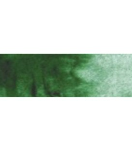 24) 312 Verde hook oscuro acuarela pastilla Cotman.
