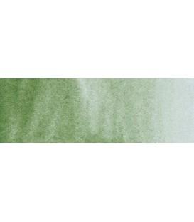 60) 629 Green earth watercolor pan Rembrandt.