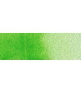 50) 633 Permanent yellowish green watercolor pan Rembrandt.