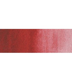 29) 318 Carmine watercolor pan Rembrandt.