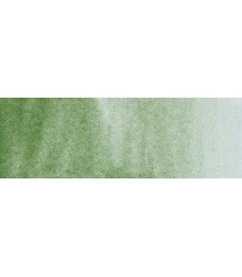 60) 629 Green earth watercolor tube Rembrandt 5 ml.