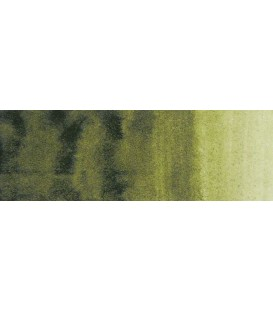 59) 620 Olive green watercolor tube Rembrandt 5 ml.