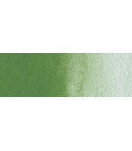 61) 668 Verde oxido cromo acuarela tubo Rembrandt 20 ml.