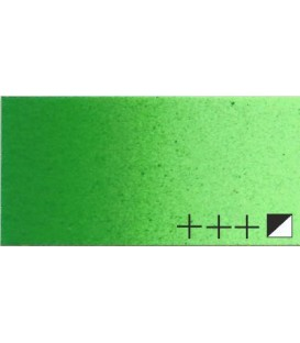40) 614 Permanent green medium acrylic Rembrandt 40 ml.