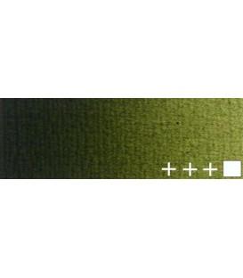 084) 620 Verd oliva oli Rembrandt 40 ml.