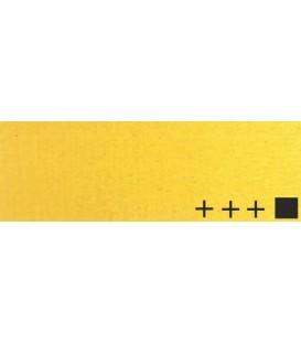 024) 223 Amarillo Napoles oscuro oleo Rembrandt 40 ml.