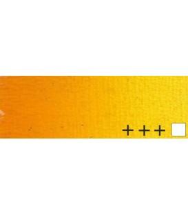 017) 251 Stil de grain amarillo oleo Rembrandt 15 ml.
