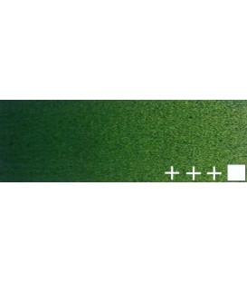 081) 623 Sap green oil Rembrandt 15 ml.