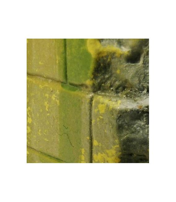 73.827 Vallejo Efectes de Molsa i Liquen (40 ml.)
