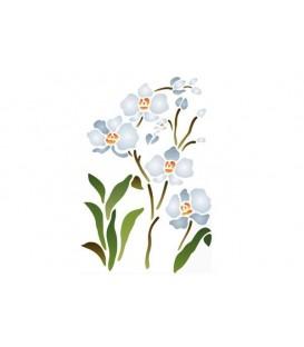 Stencils 21x29,7 Orchid plant KSG62