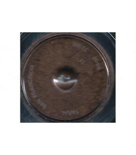 637 Dark Brown Jacquard Pearl Ex Powdered Pigments 3 g.