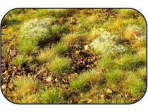 suelo vegetal