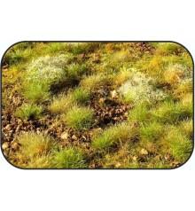 vegetal ground