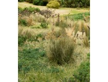 field grass by woodland scenics