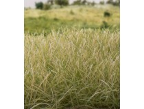 static grass by woodland scenics