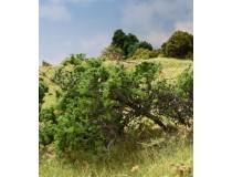 arboles y matorrales woodland scenics