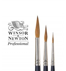 Sable Brush W & N Series Professional